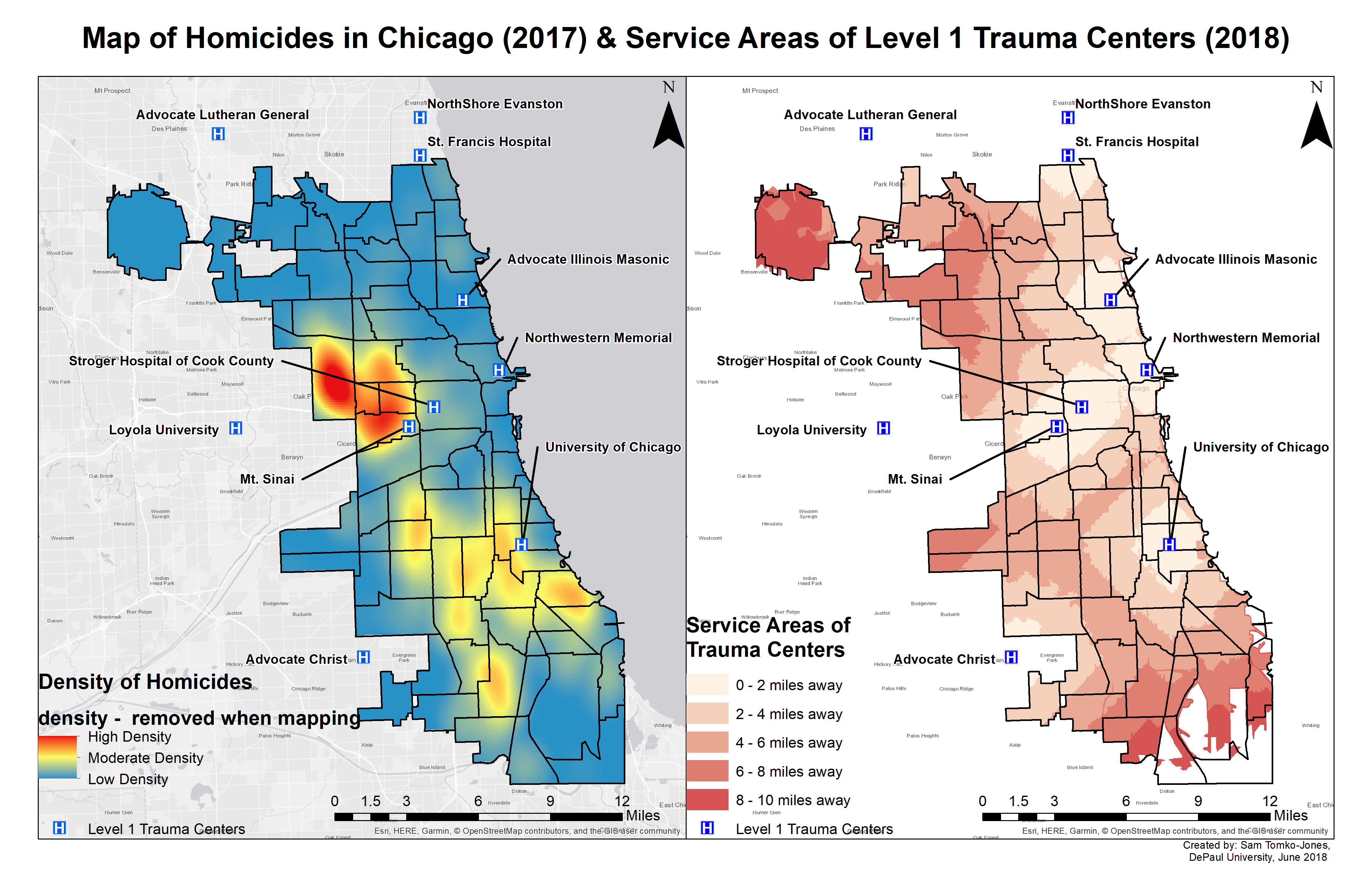 January 2019: Homicides in Chicago and Service Areas of Level 1