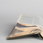 The Living Bible by Kelvin Burzon
