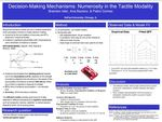 Decision-Making Mechanisms: Numerosity in the Tactile Modality by Brandon Isler, Ana Baciero, and Pablo Gomez